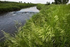 minnesota-river-lake-drinking-water